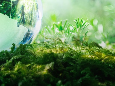 Environmental aspects: 6 ways how we protect the Earth